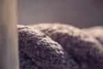 dustin-keeslar-portfolio-photography-fort-wayne-indiana-macro14